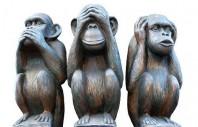 1438457185-les-trois-singes-de-la-sagesse-fond-blanc