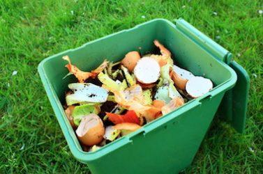 tri déchets-compost-développement durable