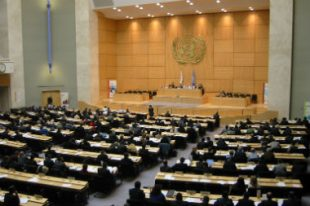 ONU-nations-unies-UNE
