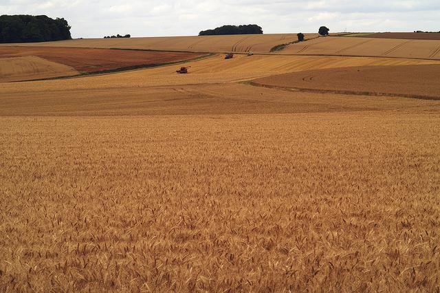 Aménagement : le dispositif de compensation agricole entre en vigueur