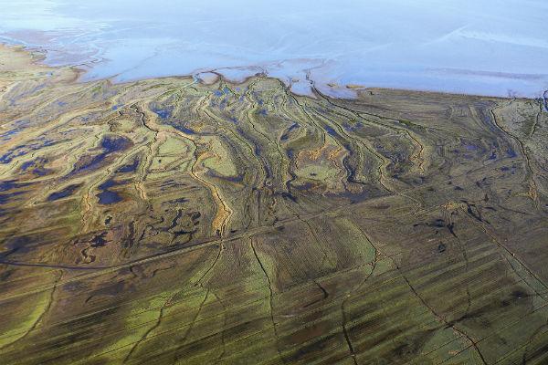Climat et biodiversité : Nature 2050 appuie l'adaptation des milieux au réchauffement