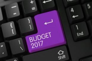 Budget 2017 - Black Key. 3D.