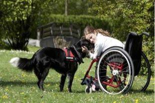 chien-enfant_handicape-zoothérapie-UNE