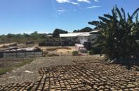 Séchage des briquettes