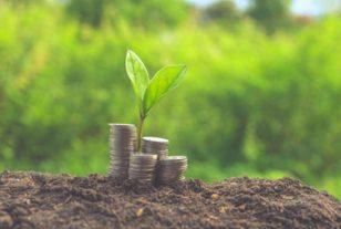 Emploi, environnement, social : le triptyque vertueux des marchés publics