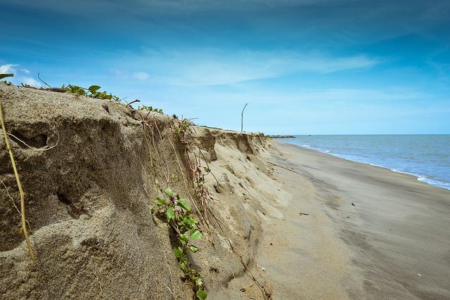 Littoral : les collectivités pourront enfin anticiper les risques d'érosion
