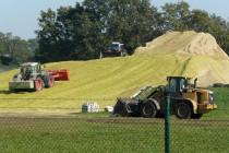 Biomassehaufen_Biogasanlage