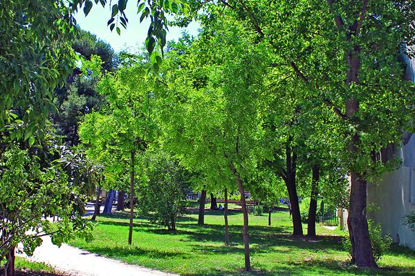Espaces verts connectés à Montpellier : un plaisir pour le public et les gestionnaires