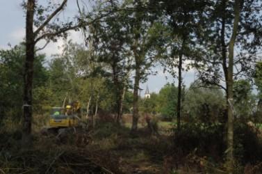 Photo 1 bis - Retrouver une biodiversité de prairies humides et rouvrir le paysage à proximité du bourg © SAH Sud Loire