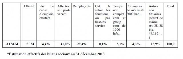 Les effectifs de contractuels selon le type de recrutement. Source : bilans sociaux au 31 décembre 2013