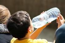 boy-drinking-from-bottle-738210_1280