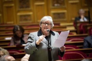 JACQUELINE GOURAULTSENATRICE DE LOIR-ET-CHER - VICE PRESIDENTE DU SENAT