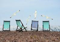 Déconfinement : restrictions d'accès aux plages pour protéger la biodiversité