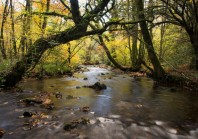 Le label «rivière sauvages» gagne encore du terrain en France