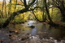 Leguer_riviere