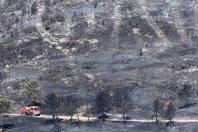 Le 22 août dernier, le paysage calciné de Carnoux-en-Provence (sud-est de la France) où 240 hectares de forêt sont partis en fumée.
