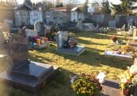 Enherbement inter tombe à base de fétuques rouges dans un cimetière de Beauvais. Cette photo prise fin novembre montre qu'en fin de saison et après les premières gelées, le résultat reste correct
