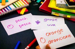 Bilingue-bilinguisme-langues-UNE