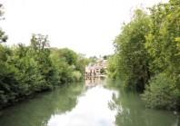 A Poitiers, une «charte de l'arbre» garantit le bien-être des végétaux