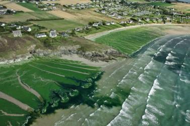 Algues vertes à Plomodiern, Baie de Douarnenez