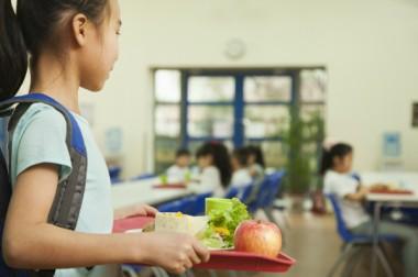 Restauration scolaire : des coûts multifactoriels