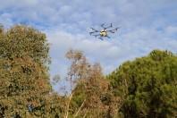 Traitement chenilles processionnaires par drone - ©Mairie de Cannes 3