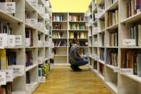 600x400-cc0-via-pixhere-bibliotheque-girl-building-reading-collection-training-student-1324291-pxhere-UNE