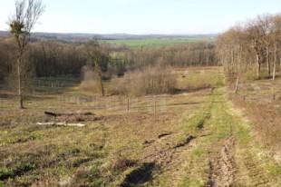 Photo 2 – ...et après aménagement du verger, d'une pâture, d'une bande enherbée le long du ruisseau et de zones de gagnage © Mairie Saint-Rémy