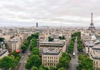 Les « forêts urbaines », essentielles aux villes de demain