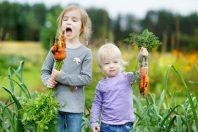 enfants légumes jardin alimentation carottes