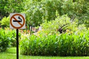 Cigarette parcs1