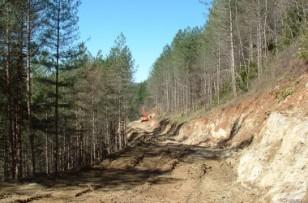 La meilleure protection des forêts : limiter ce qui peut partir en fumée