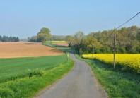 Pourquoi la ruralité accède au rang des priorités Rue de Valois