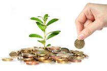argent-plante-pouss-une