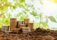 Une touche de vert en plus dans les marchés publics