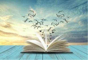 livre-purefeel-AdobeStock_212524764
