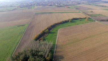Un corridor écologique, propriété de la commune, est placé au milieu de la plaine céréalière.