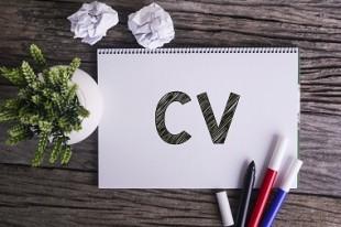 Comment bâtir son CV ?
