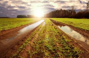 L'heure des premières récoltes pour l'agenda rural