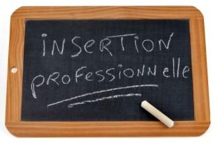 insertion-professionnelle