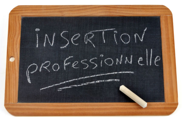 insertion-professionnelle