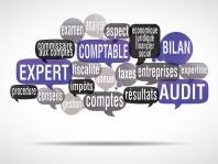 nuage de mots bulles : expert comptable