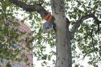 arbres-connectes