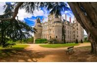 patrimoine-chateau-freesurf - Adobestock