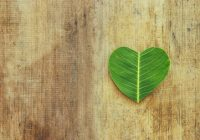 santé développement durable