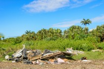 Illegal waste dump and tropical forest, la Reunion Island