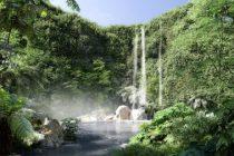 Photos 1 – Le « Jardin extraordinaire » onzième grand parc nantais © Phytolab