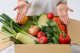 Carton de légumes