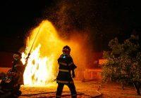Les capitaines, commandants et lieutenants-colonels de sapeurs-pompiers professionnels en 10 questions