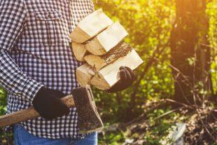 Du bois coupé